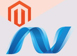 Magento API and C#